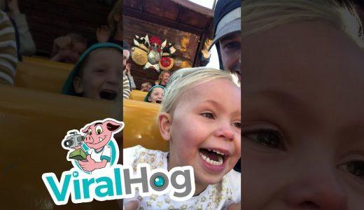 テーマパークのアトラクションに初めて乗る3歳の感情がこちら