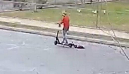 散歩させるのが面倒で電動スクーターに犬をくくりつけて高速で走り、犬は引きづられ・・・